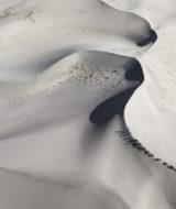 Les yaks vivent entre 2 000 et 5 000 mètres d'altitude. Adaptés au milieu himalayen, ces imposants mammifères peuvent transporter plus de 120 kilos de charge ; les femelles fournissent du lait. De longues caravanes de yaks assurent le commerce de nombreuses denrées dans les régions les plus reculées de l'Himalaya. Le nombre de yaks domestiques est estimé à 12 millions.