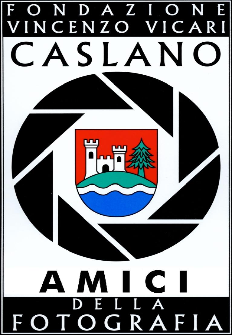 logo_fondazionevicari