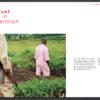 lpd-catalogo-2014-04