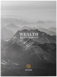 wealth-management-wtf-bank-carlos-spottorno
