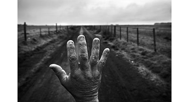 Pablo Piovano - The Human Cost